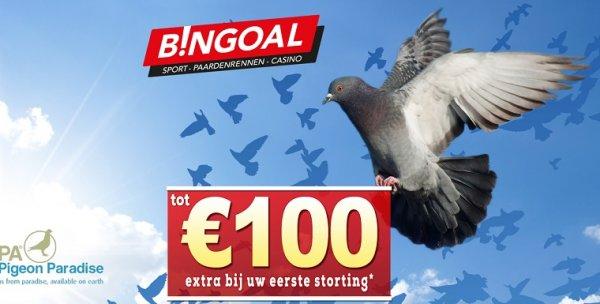 Wedden op duivensport bingoal bonus