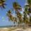 Paradise Papers: Kansspelcommissie doet nader onderzoek naar Betway