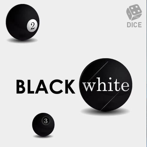 Black White Dice logo