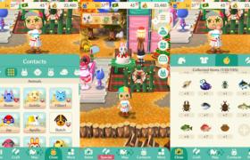 Animal Camp